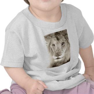 Portrait of a Lion Shirts
