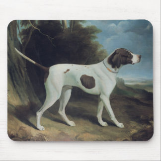 Portrait of a liver and white pointer mouse pad