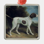 Portrait of a liver and white pointer ornament