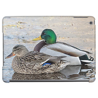 Portrait of a male and female mallard iPad air cover