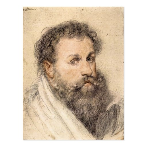 Portrait of a Man by Paul Rubens Post Cards
