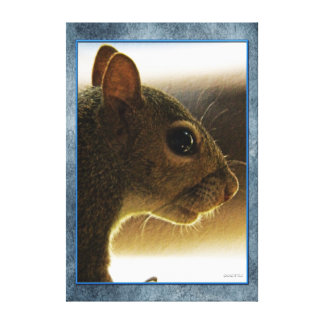 Portrait of a Mississippi Gray Squirrel /Blue Back Canvas Print