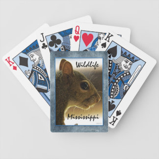 Portrait of a Mississippi Gray Squirrel /Blue Back Bicycle Card Decks