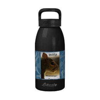 Portrait of a Mississippi Gray Squirrel /Blue Back Drinking Bottle