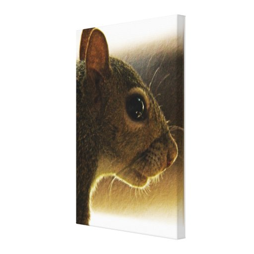 Portrait of a Mississippi Gray Squirrel/Natural Stretched Canvas Print
