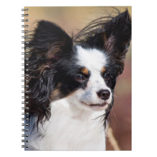 Portrait Of A Papillon Sitting In The Wind Notebook