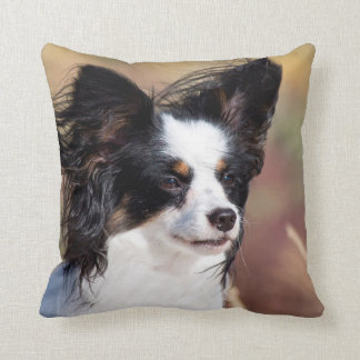 Portrait Of A Papillon Sitting In The Wind Pillow