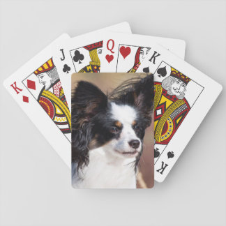 Portrait Of A Papillon Sitting In The Wind Playing Cards