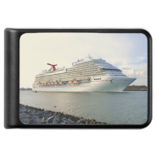 Portrait of a Passing Cruise Ship Power Bank