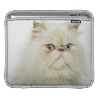 Portrait of a Persian cat iPad Sleeves