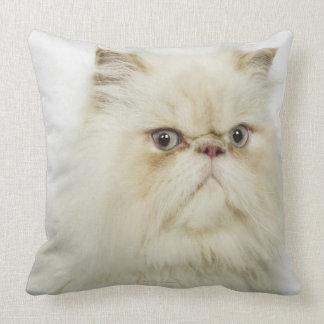Portrait of a Persian cat Pillow