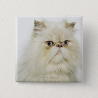 Portrait of a Persian cat Pinback Button