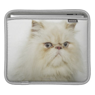 Portrait of a Persian cat Sleeve For iPads