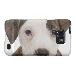 Portrait of a pitbull puppy samsung galaxy s cases