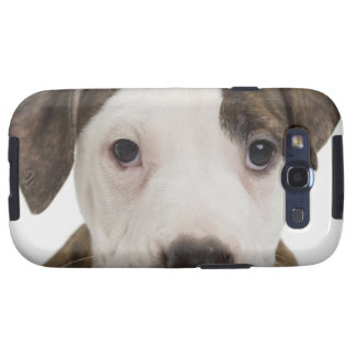 Portrait of a pitbull puppy galaxy s3 covers