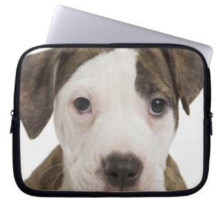 Portrait of a pitbull puppy computer sleeve