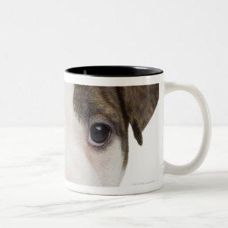 Portrait of a pitbull puppy coffee mugs