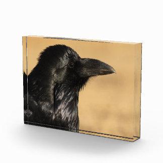 Portrait of a Raven Award
