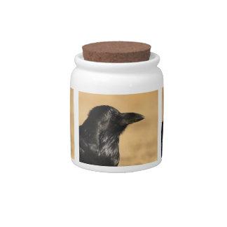Portrait of a raven candy dish