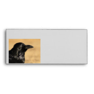 Portrait of a Raven Envelope