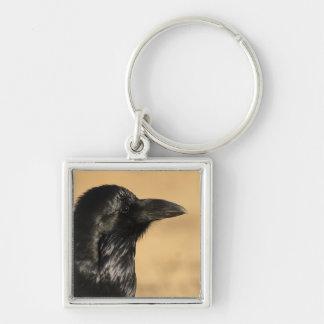 Portrait of a Raven Keychain