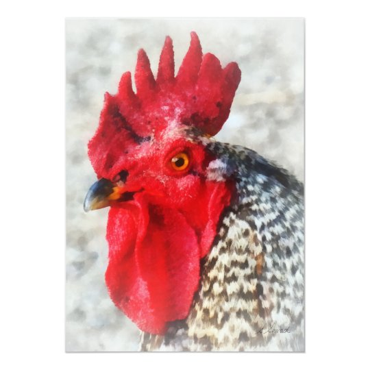 Portrait of a Rooster Card