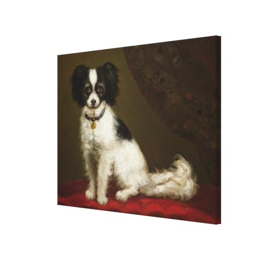 Portrait of a Spaniel Canvas Prints