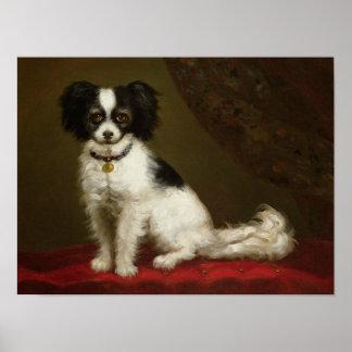 Portrait of a Spaniel Poster