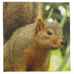 Portrait of a Squirrel Nature Animal Photography Cloth Napkin