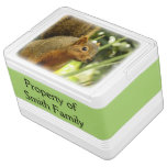 Portrait of a Squirrel Nature Animal Photography Drink Cooler