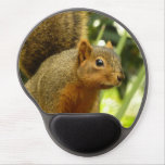 Portrait of a Squirrel Nature Animal Photography Gel Mouse Pad