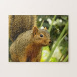 Portrait of a Squirrel Nature Animal Photography Jigsaw Puzzle