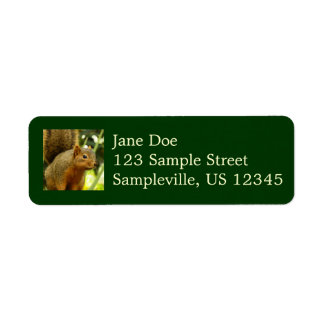 Portrait of a Squirrel Nature Animal Photography Return Address Label