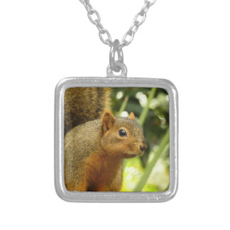 Portrait of a Squirrel Nature Animal Photography Silver Plated Necklace
