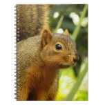 Portrait of a Squirrel Nature Animal Photography Spiral Notebook