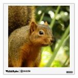 Portrait of a Squirrel Nature Animal Photography Wall Decal