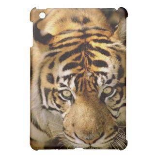 Portrait of a tiger iPad mini cases