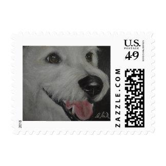 Portrait of a White Rescue Dog Postage