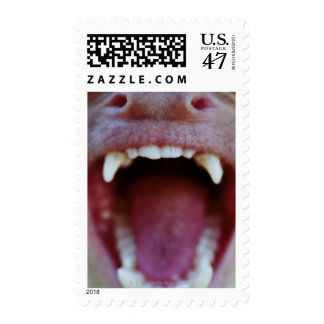 Portrait of a White-Throated Capuchin Monkey Postage