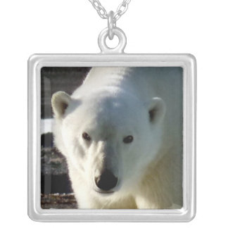 Portrait of a wild Polar bear Square Pendant Necklace