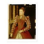 Portrait of a Woman, 1567 (oil on panel) Post Card