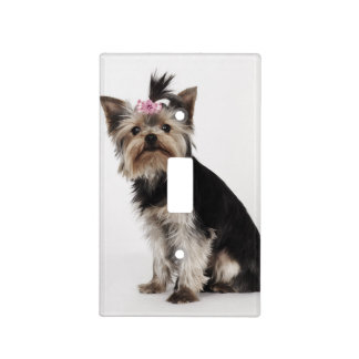 Portrait of a Yorkshire Terrier dog Light Switch Cover