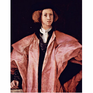 Portrait Of A Young Man By Pontormo Jacopo Best Q Cut Out