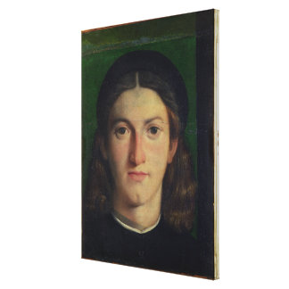 Portrait of a Young Man, c.1505 (oil on panel) Canvas Print