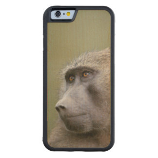 Portrait of adult Olive baboon (Papio anubis) Carved Maple iPhone 6 Bumper Case