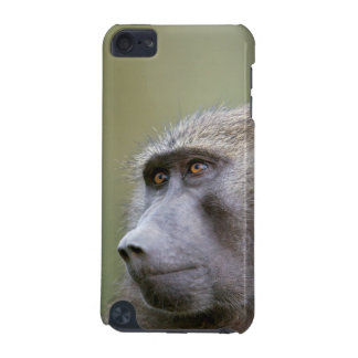 Portrait of adult Olive baboon (Papio anubis) iPod Touch (5th Generation) Covers