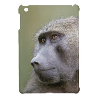 Portrait of adult Olive baboon (Papio anubis) iPad Mini Case