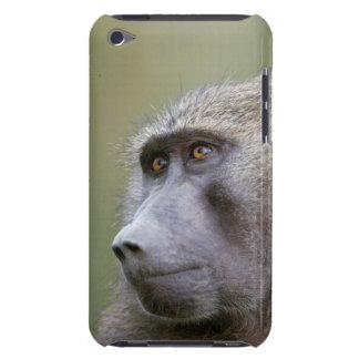 Portrait of adult Olive baboon (Papio anubis) iPod Case-Mate Case