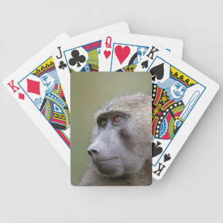 Portrait of adult Olive baboon (Papio anubis) Poker Cards
