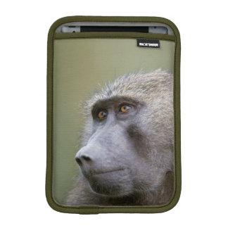 Portrait of adult Olive baboon (Papio anubis) Sleeve For iPad Mini